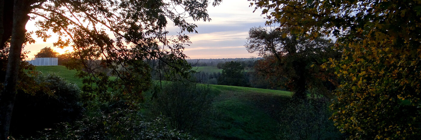 photo of countryside at sunset viewed through branches covered in autumn leaves