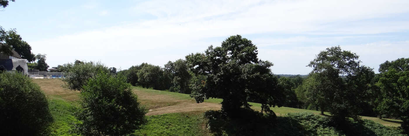 Photo of an undulating countryside punctuated by tress. Parc Mayenne
