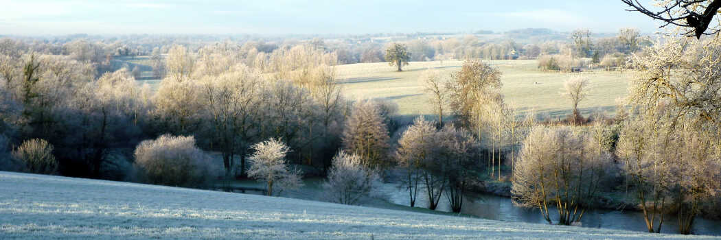 Photo of a view across trees and fields covered in frost